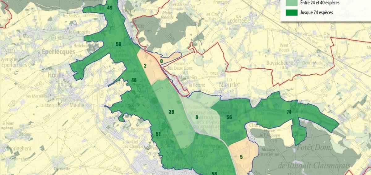 PNR Cote d'Opale - Oiseaux marais audomarois - Guillaume Sciaux - Cartographe professionnel