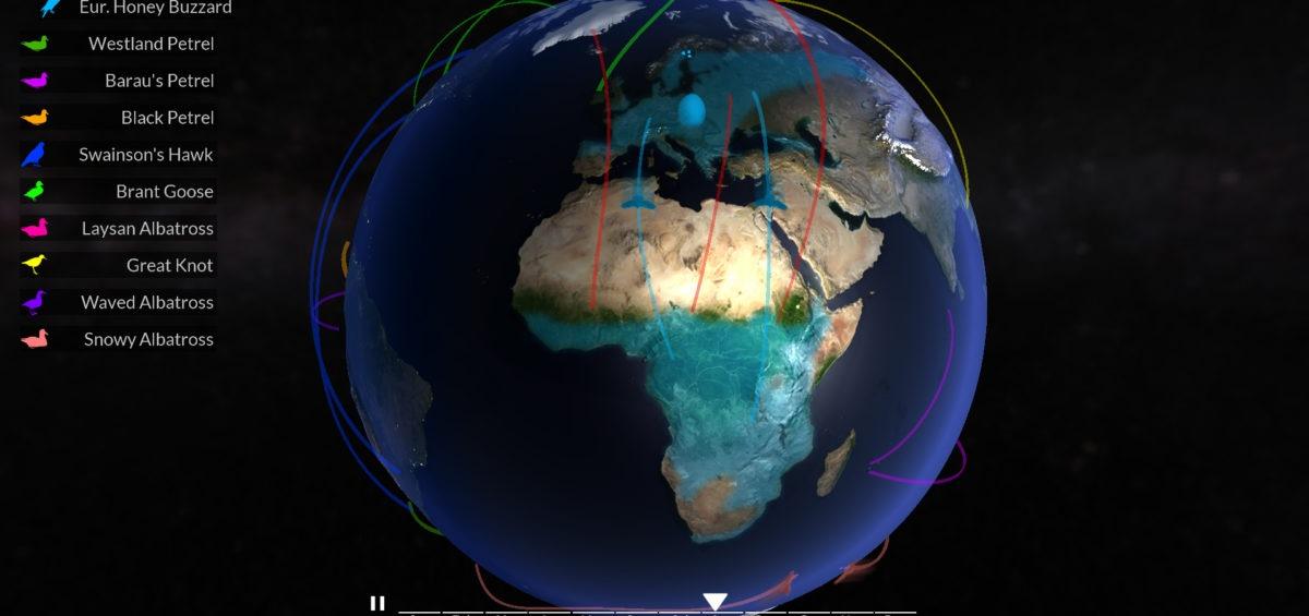 carte-des-migrations-des-oiseaux - Guillaume Sciaux - Cartographe professionnel