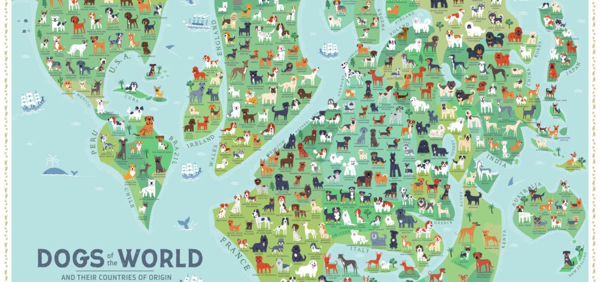 Carte des races de chiens - Guillaume Sciaux - Cartographe professionnel